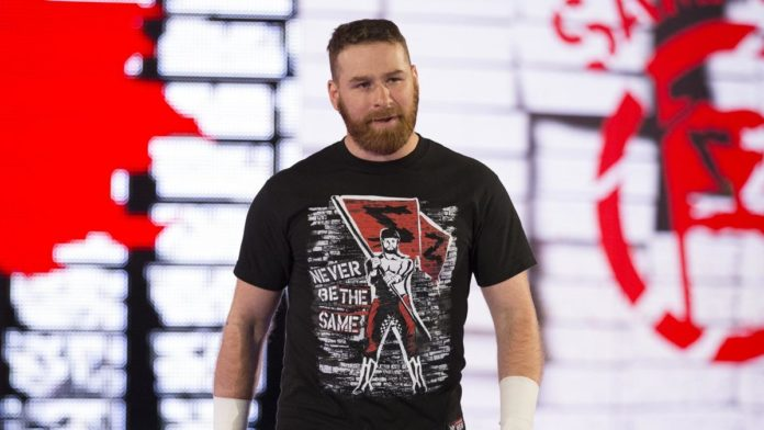 Image result for WWE Sami Zayn