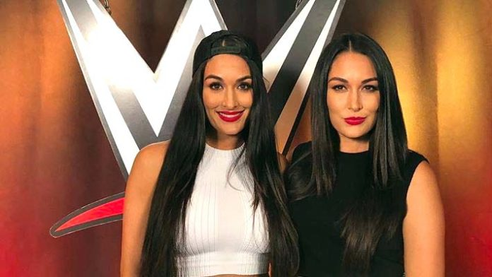 Video The Bella Twins  nudes (79 pics), iCloud, cleavage