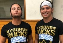 The Young Bucks The Elite