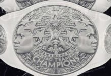 WWE Womens Tag Titles