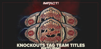 Knockouts tag team championships